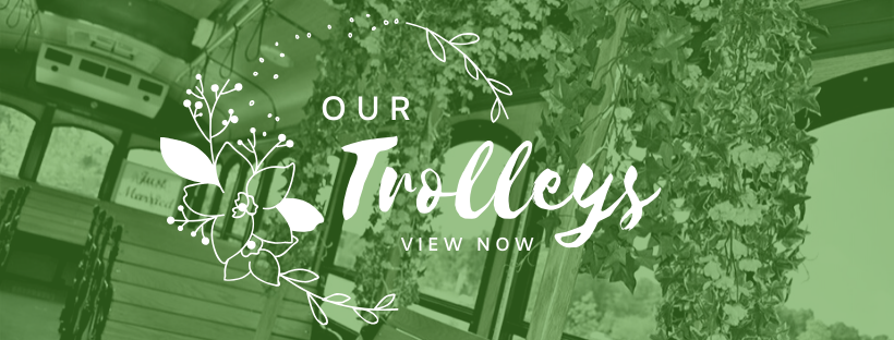 Click Here to View Out Trolleys